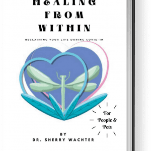 Holistic Healing Within Ebook